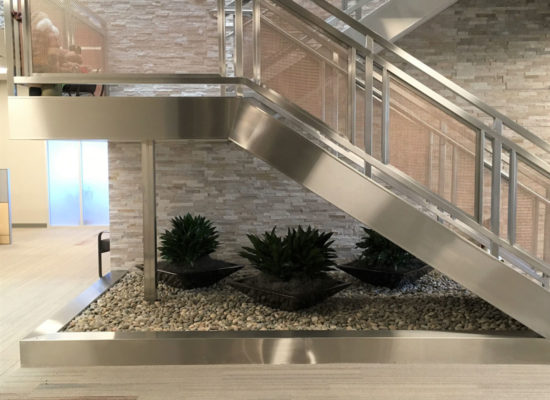 Commercial interior plantscaping
