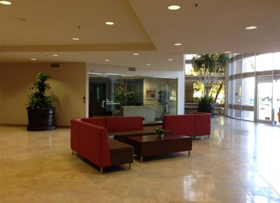 Interior commercial plantscaping